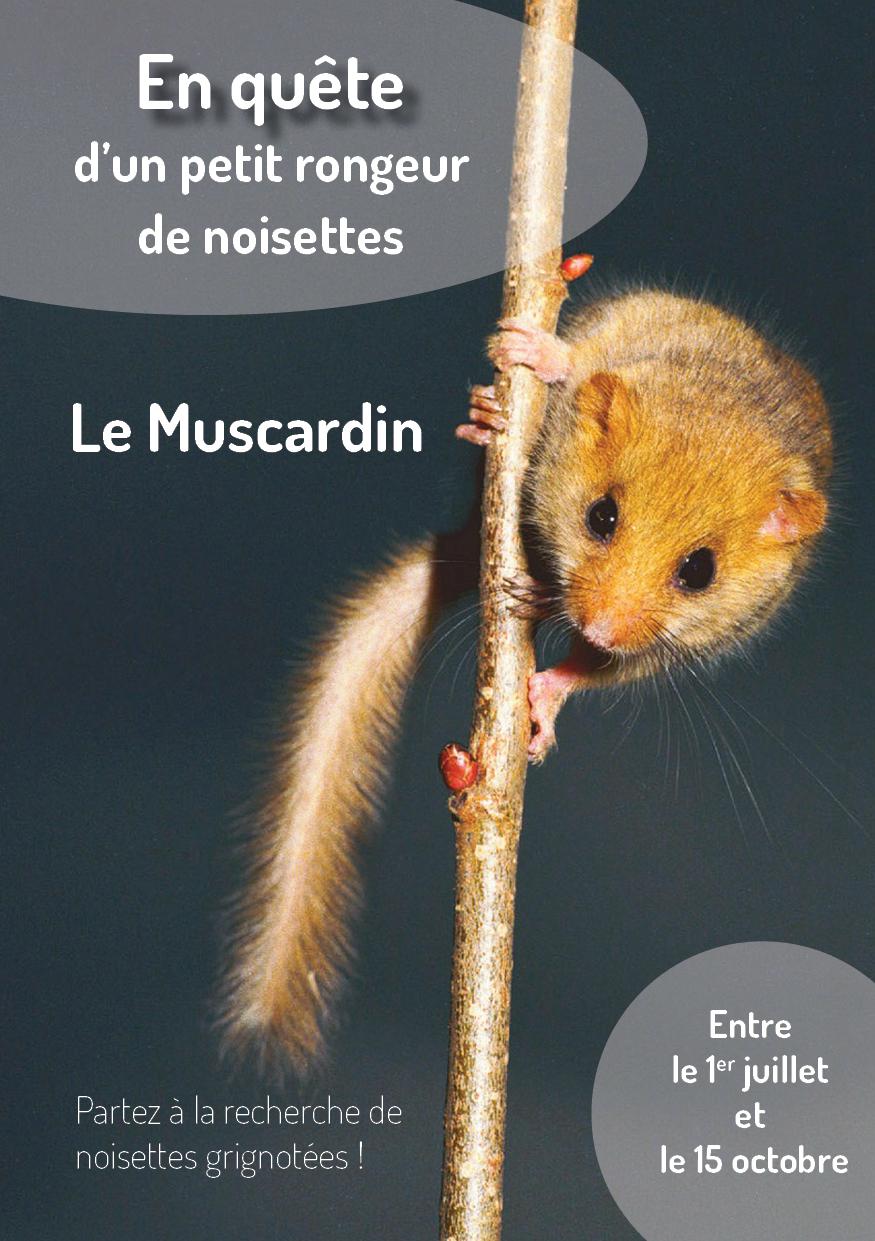 Plaquette_quete_muscardin_2021-1