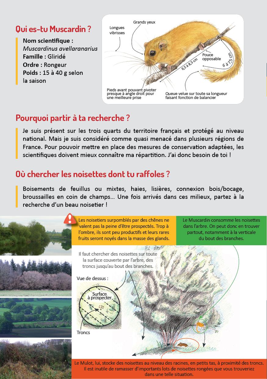 Plaquette_quete_muscardin_2021-2