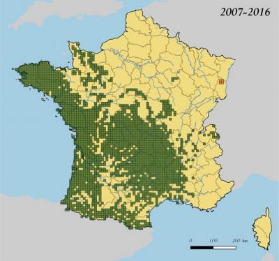 Répartition de la Loutre d'Europe en France sur la période 2007-2016